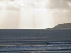 Windsurfing isn't dead... apparently